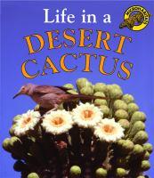 Life in A Desert Cactus