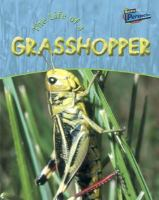 The Life of A Grasshopper