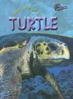 The Life of A Turtle