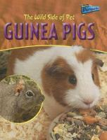 The Wild Side of Pet Guinea Pigs