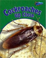 Cockroaches up Close