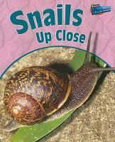 Snails up Close