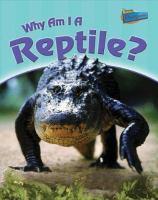 Why Am I A Reptile?