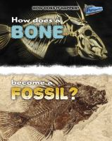 How Does A Bone Become A Fossil