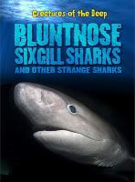 Bluntnose Sixgill Sharks and Other Strange Sharks
