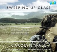 Sweeping up Glass
