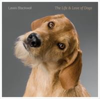 The Life & Love of Dogs