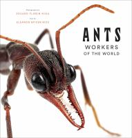 Ants : Workers of the World
