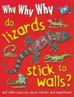 Why, Why, Why Do Lizards Stick to Walls?
