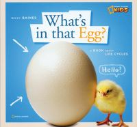 What's in That Egg?