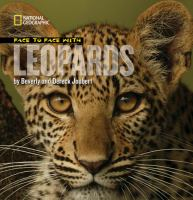 Face to Face With Leopards