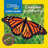 Caterpillar to Butterfly / Text by Catherine D. Hughes