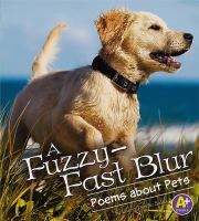 A Fuzzy-fast Blur