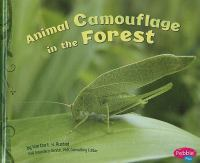 Animal Camouflage in the Forest