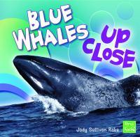 Blue Whales up Close