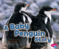 A Baby Penguin Story