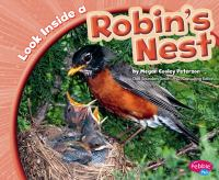 Look Inside A Robin's Nest