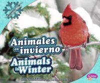 Animales En Invierno