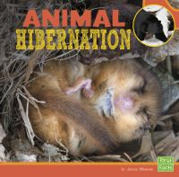 Animal Hibernation