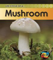 Life Cycle Of A Mushroom