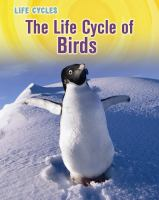 The Life Cycle of Birds
