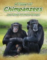 A Troop of Chimpanzees, and Other Primate Groups