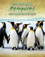 A Rookery of Penguins, and Other Bird Groups