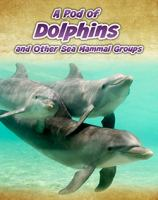 A Pod of Dolphins, and Other Sea Mammal Groups