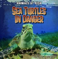 Sea Turtles in Danger