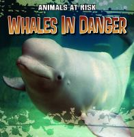 Whales in Danger