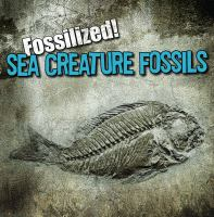 Sea Creature Fossils