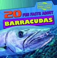 20 Fun Facts About Barracudas
