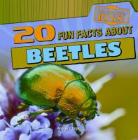 20 Fun Facts About Beetles
