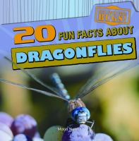 20 Fun Facts About Dragonflies