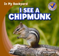 I See A Chipmunk