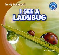 I See A Ladybug