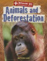 Animals and Deforestation