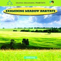 Examining Meadow Habitats