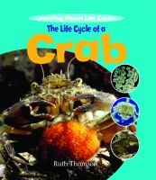 The Life Cycle of A Crab