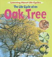 The Life Cycle of An Oak Tree