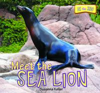 Meet the Sea Lion