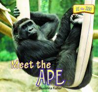 Meet the Ape
