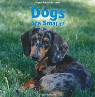 Dogs Are Smart!