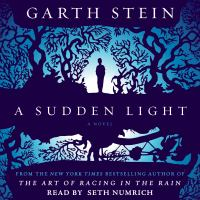 A Sudden Light