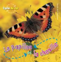 Le papillon et la chenille