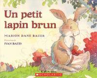 Un petit lapin brun