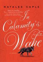 In Calamity's Wake