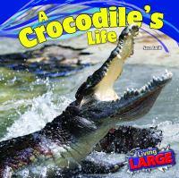 A Crocodile's Life
