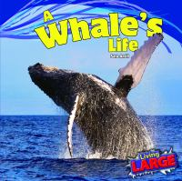 A Whale's Life
