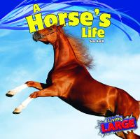 A Horse's Life